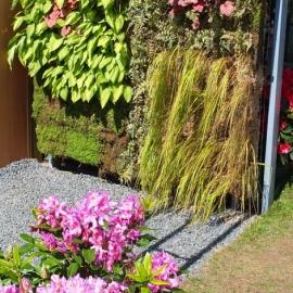 Mur végétal BIPALIS - Lambert Clôtures
